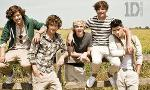 Do you know One Direction